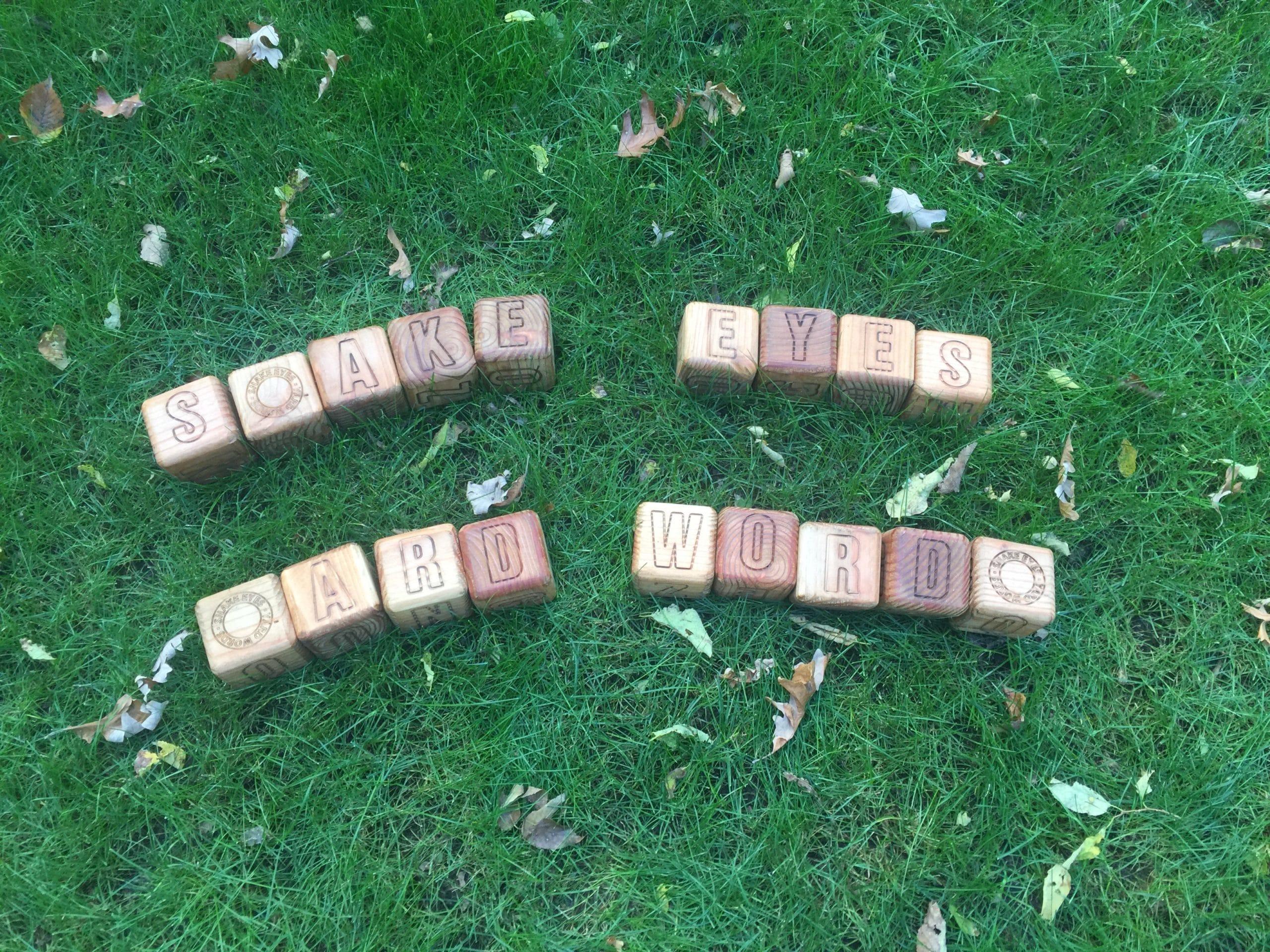 Snake Eyes Yard Words - Wooden Yard Games